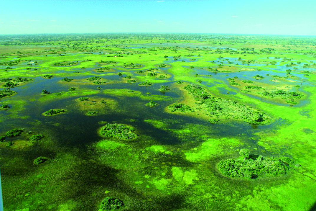 Fly-In Safaris in Botswana bei Südafrika Reisen