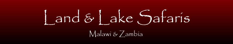 Land and Lake Logo