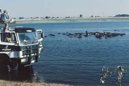 am Chobe River