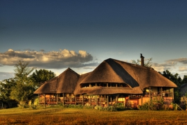chobe-savannah-1-450x300